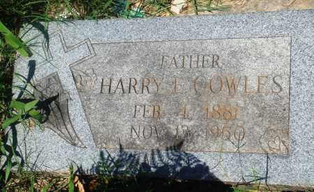 COWLES, HARRY E - Newton County, Arkansas | HARRY E COWLES - Arkansas Gravestone Photos