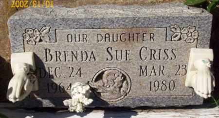 CRISS, BRENDA SUE - Newton County, Arkansas | BRENDA SUE CRISS - Arkansas Gravestone Photos