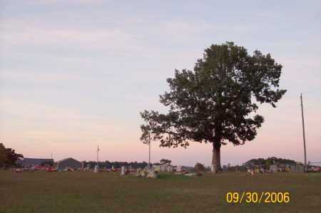 *CROSS ROADS CEMETERY OVERVIEW,  - Newton County, Arkansas |  *CROSS ROADS CEMETERY OVERVIEW - Arkansas Gravestone Photos