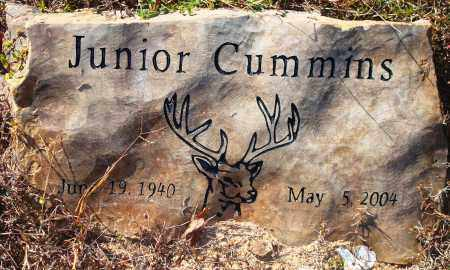 CUMMINS, JUNIOR - Newton County, Arkansas | JUNIOR CUMMINS - Arkansas Gravestone Photos