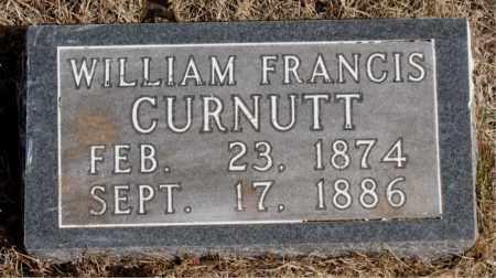 CURNUTT, WILLIAM FRANCIS - Newton County, Arkansas   WILLIAM FRANCIS CURNUTT - Arkansas Gravestone Photos