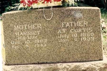 CURTIS, HARRIET - Newton County, Arkansas | HARRIET CURTIS - Arkansas Gravestone Photos