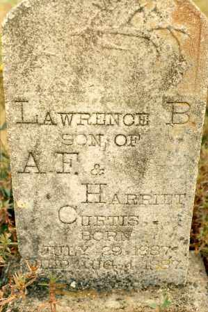 CURTIS, LAWRENCE - Newton County, Arkansas | LAWRENCE CURTIS - Arkansas Gravestone Photos