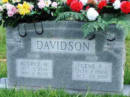 DAVIDSON, AUDREY M - Newton County, Arkansas | AUDREY M DAVIDSON - Arkansas Gravestone Photos