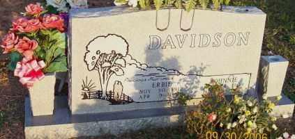 DAVIDSON, JOHNNIE W. - Newton County, Arkansas | JOHNNIE W. DAVIDSON - Arkansas Gravestone Photos
