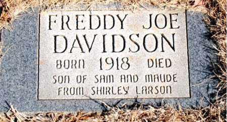 DAVIDSON, FREDDY JOE - Newton County, Arkansas | FREDDY JOE DAVIDSON - Arkansas Gravestone Photos