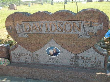 DAVIDSON, HERBERT L. - Newton County, Arkansas   HERBERT L. DAVIDSON - Arkansas Gravestone Photos