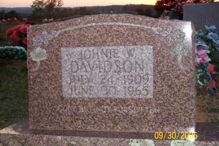 DAVIDSON, JOHNIE W. - Newton County, Arkansas | JOHNIE W. DAVIDSON - Arkansas Gravestone Photos