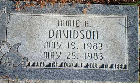 DAVIDSON, JAMIE A. - Newton County, Arkansas | JAMIE A. DAVIDSON - Arkansas Gravestone Photos