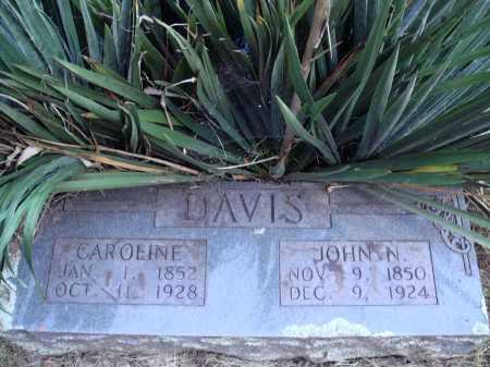 DAVIS, CAROLINE - Newton County, Arkansas   CAROLINE DAVIS - Arkansas Gravestone Photos