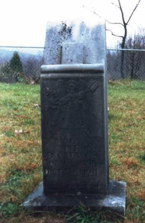 BLACKWOOD DAVIS, MARY - Newton County, Arkansas   MARY BLACKWOOD DAVIS - Arkansas Gravestone Photos