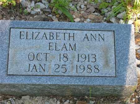 ELAM, ELIZABETH ANN - Newton County, Arkansas   ELIZABETH ANN ELAM - Arkansas Gravestone Photos
