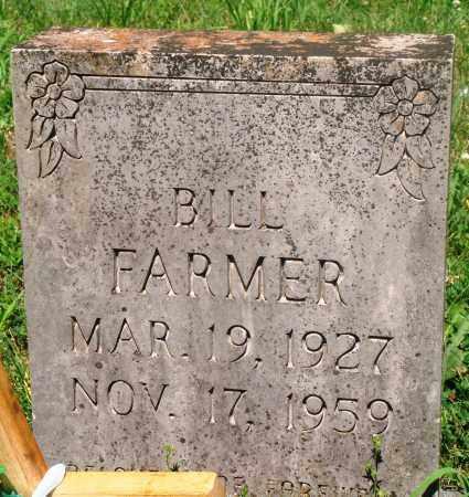 FARMER, BILL - Newton County, Arkansas | BILL FARMER - Arkansas Gravestone Photos