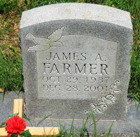 FARMER, JAMES A - Newton County, Arkansas | JAMES A FARMER - Arkansas Gravestone Photos