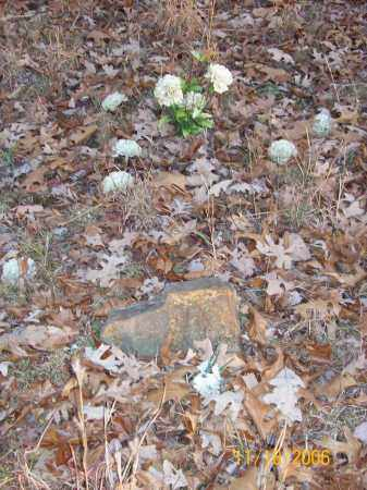 "FARMER, WILLIAM ""HARRISON"" - Newton County, Arkansas | WILLIAM ""HARRISON"" FARMER - Arkansas Gravestone Photos"