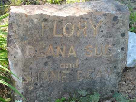 FLORY, SHANE DEAN - Newton County, Arkansas   SHANE DEAN FLORY - Arkansas Gravestone Photos