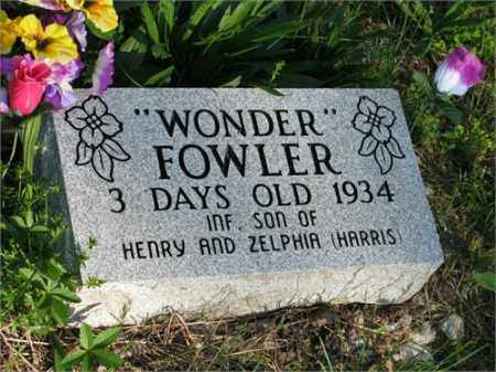 "FOWLER, ""WONDER"" - Newton County, Arkansas | ""WONDER"" FOWLER - Arkansas Gravestone Photos"