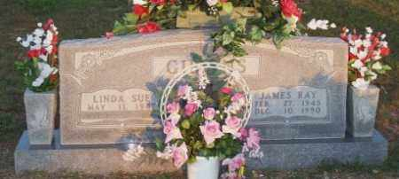 GIBBINS, JAMES RAY - Newton County, Arkansas | JAMES RAY GIBBINS - Arkansas Gravestone Photos