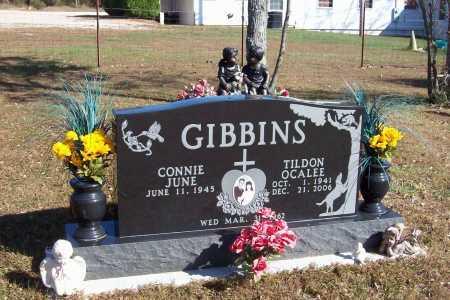 GIBBINS, TILDON OCALEE - Newton County, Arkansas | TILDON OCALEE GIBBINS - Arkansas Gravestone Photos