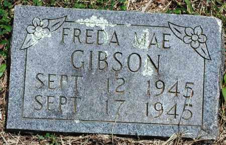 GIBSON, FREDA MAE - Newton County, Arkansas   FREDA MAE GIBSON - Arkansas Gravestone Photos