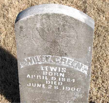 GREEN, WILEY - Newton County, Arkansas | WILEY GREEN - Arkansas Gravestone Photos
