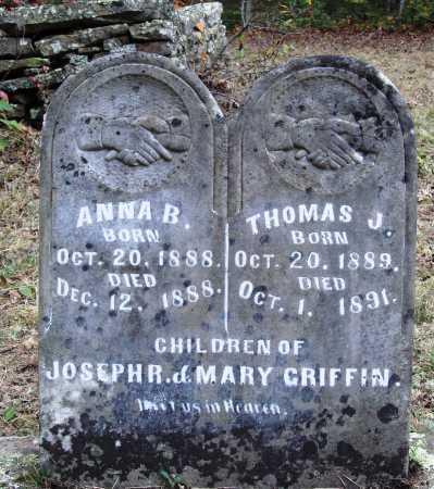 GRIFFIN, THOMAS J. - Newton County, Arkansas | THOMAS J. GRIFFIN - Arkansas Gravestone Photos