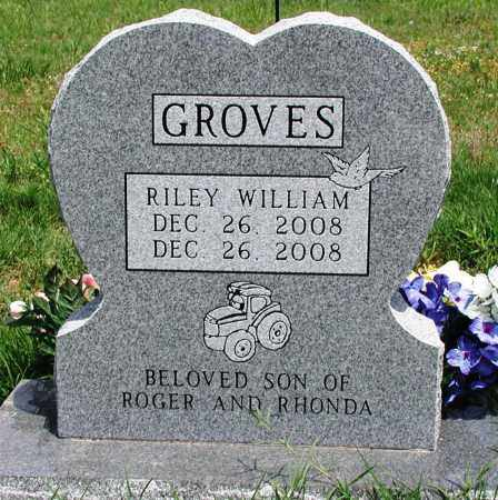 GROVES, RILEY WILLIAM - Newton County, Arkansas | RILEY WILLIAM GROVES - Arkansas Gravestone Photos