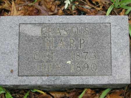 HARP, ERASTUS - Newton County, Arkansas | ERASTUS HARP - Arkansas Gravestone Photos