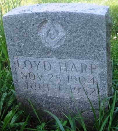 HARP, LOYD - Newton County, Arkansas   LOYD HARP - Arkansas Gravestone Photos