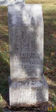 HENDERSON, LIDDEE - Newton County, Arkansas | LIDDEE HENDERSON - Arkansas Gravestone Photos
