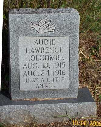HOLCOMBE, AUDIE LAWRENCE - Newton County, Arkansas | AUDIE LAWRENCE HOLCOMBE - Arkansas Gravestone Photos