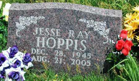 HOPPIS, JESSE RAY - Newton County, Arkansas | JESSE RAY HOPPIS - Arkansas Gravestone Photos