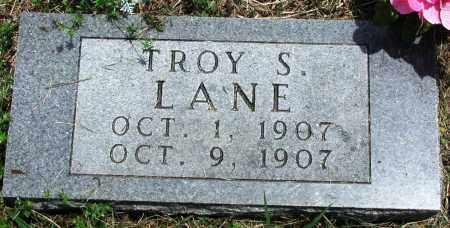 LANE, TROY S - Newton County, Arkansas | TROY S LANE - Arkansas Gravestone Photos