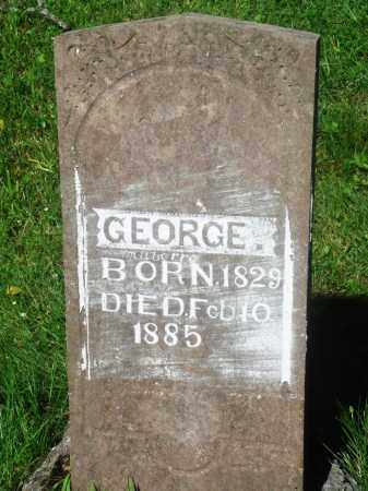 MABERRY, GEORGE - Newton County, Arkansas | GEORGE MABERRY - Arkansas Gravestone Photos