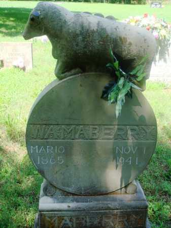 "MABERRY, WILLIAM A ""BILL"" - Newton County, Arkansas | WILLIAM A ""BILL"" MABERRY - Arkansas Gravestone Photos"