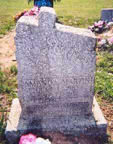 MARTIN, AMANDA - Newton County, Arkansas   AMANDA MARTIN - Arkansas Gravestone Photos