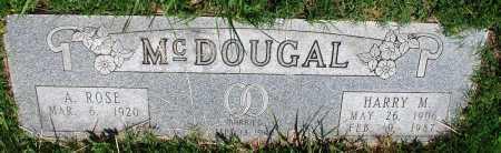 MCDOUGAL, HARRY M - Newton County, Arkansas | HARRY M MCDOUGAL - Arkansas Gravestone Photos