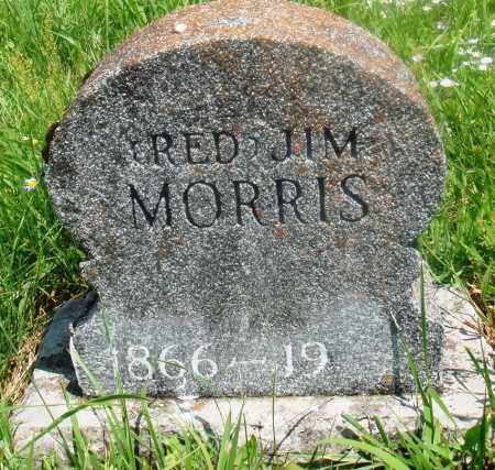MORRIS, RED JIM - Newton County, Arkansas | RED JIM MORRIS - Arkansas Gravestone Photos