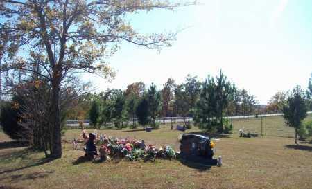 *MOUNTAIN SPRINGS CHURCH CEMET,  - Newton County, Arkansas |  *MOUNTAIN SPRINGS CHURCH CEMET - Arkansas Gravestone Photos