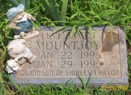 MOUNTJOY, LEVI JAMES - Newton County, Arkansas | LEVI JAMES MOUNTJOY - Arkansas Gravestone Photos