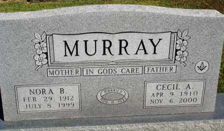 MURRAY, NORA B. - Newton County, Arkansas | NORA B. MURRAY - Arkansas Gravestone Photos