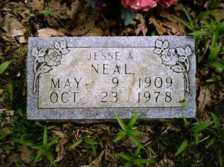 NEAL, JESSE A - Newton County, Arkansas | JESSE A NEAL - Arkansas Gravestone Photos