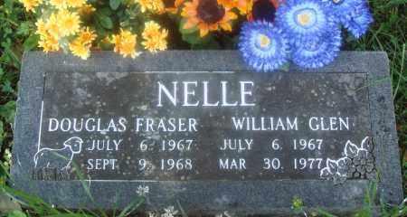 NELLE, DOUGLAS FRASER - Newton County, Arkansas | DOUGLAS FRASER NELLE - Arkansas Gravestone Photos
