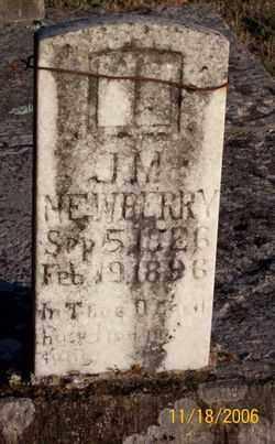 NEWBERRY (2), JAMES MONTGOMERY - Newton County, Arkansas | JAMES MONTGOMERY NEWBERRY (2) - Arkansas Gravestone Photos