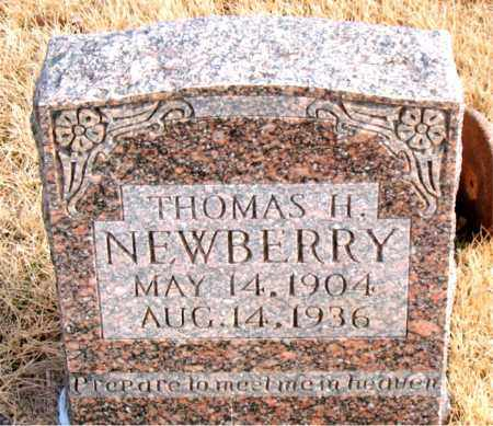 NEWBERRY, THOMAS H. - Newton County, Arkansas | THOMAS H. NEWBERRY - Arkansas Gravestone Photos