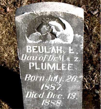 PLUMLEE, BEULAH  E. - Newton County, Arkansas | BEULAH  E. PLUMLEE - Arkansas Gravestone Photos