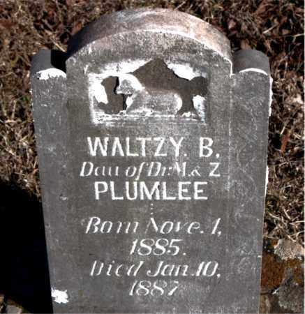 PLUMLEE, WALTZY  B. - Newton County, Arkansas | WALTZY  B. PLUMLEE - Arkansas Gravestone Photos