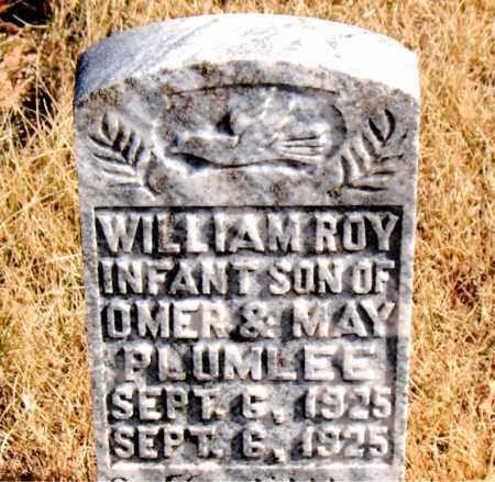 PLUMLEE, WILLIAM ROY - Newton County, Arkansas | WILLIAM ROY PLUMLEE - Arkansas Gravestone Photos