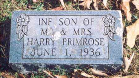 PRIMROSE, INFANT SON - Newton County, Arkansas | INFANT SON PRIMROSE - Arkansas Gravestone Photos