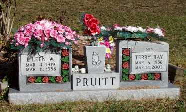 PRUITT, TERRY RAY - Newton County, Arkansas | TERRY RAY PRUITT - Arkansas Gravestone Photos